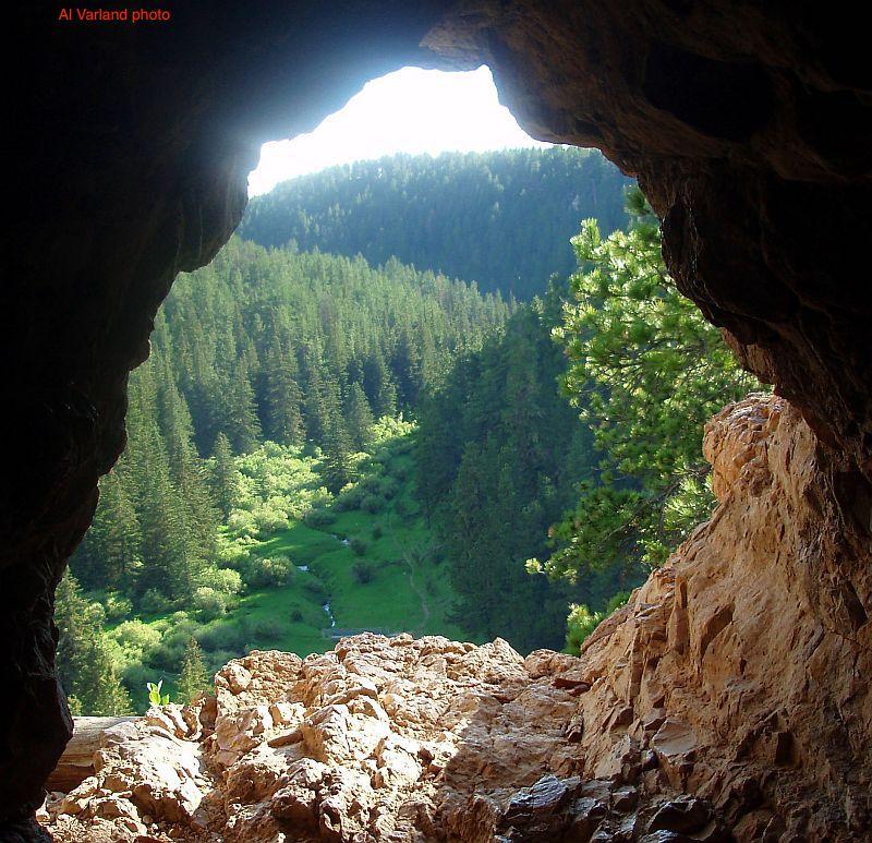 Timon Cave AV id